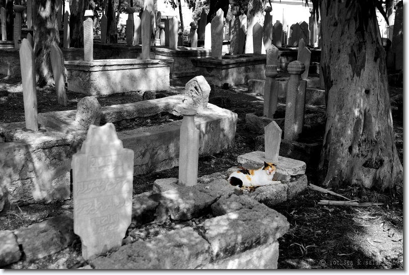 Turkish Cemetery at the Island of Rhodes, Greece