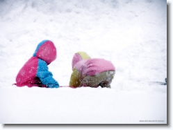 kids-snow-sliding-4 * ** falls down ** * 1024 x 766 * (179KB)