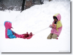 kids-snow-sliding-6 * uhhh?!!! you're heavy! * 1024 x 766 * (201KB)