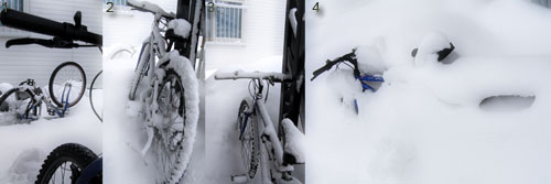 metamorphosis of my bicycle
